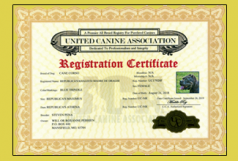 UCA Registration Certificate